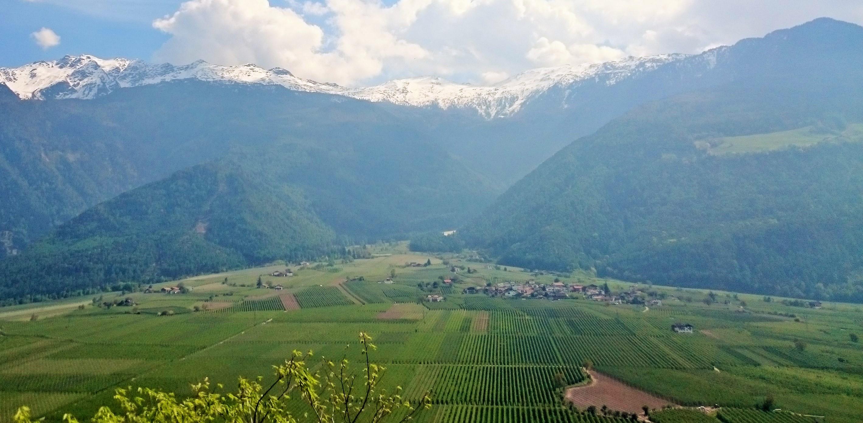 Alto Adige/Südtirol – zaokružen spoj vinskih kultura